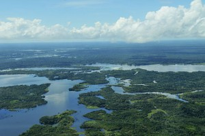 The Amazon Basin, Biology GCSE | Biology A level